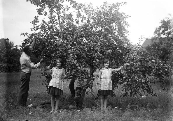 zsohárzsuzsa1930